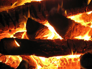 Самым распространенным видом дров являются березовые дрова